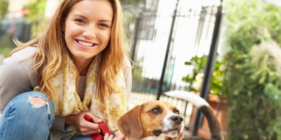 Pet Sitting Diploma Course